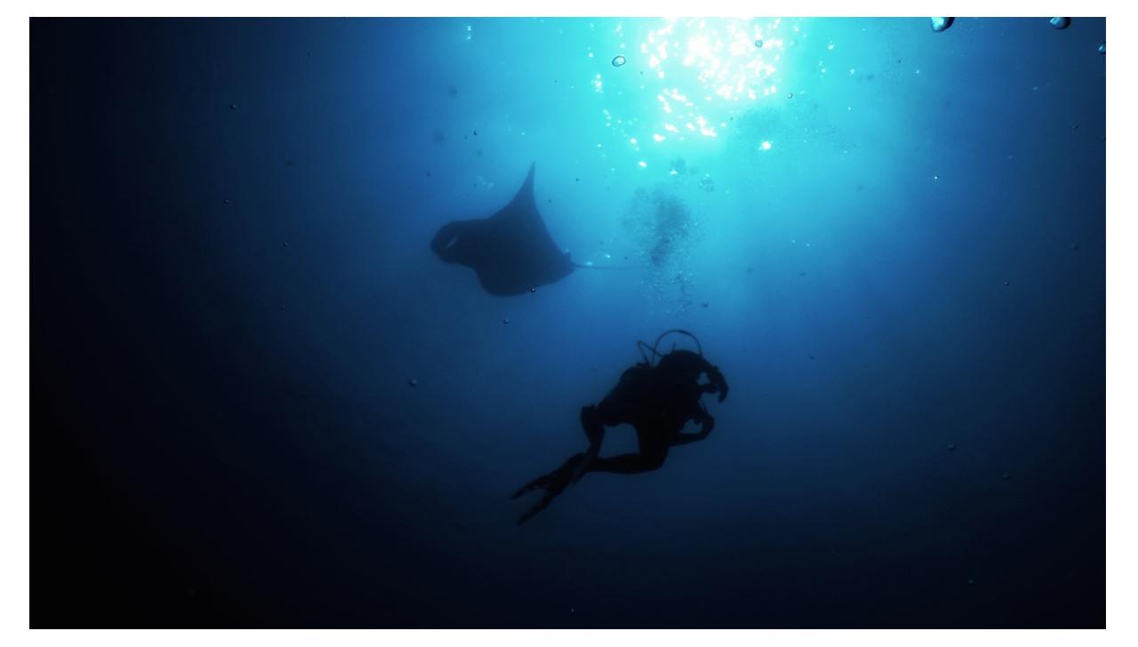 best scuba diving in andaman & Mumbai India