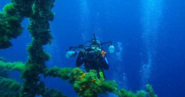Do you Aspire to Become an Expert Rescue Diver_ (1)